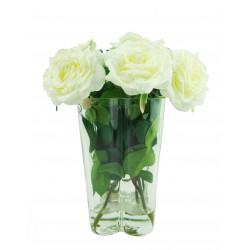 Centro Toscana Rosas Blancas