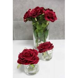 Centro Toscana Rosas Rojas