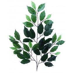 Rama Ficus Spray Blco/rosa X 42