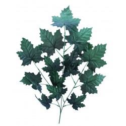 Rama Maple Verde