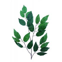 Rama Limon Verde