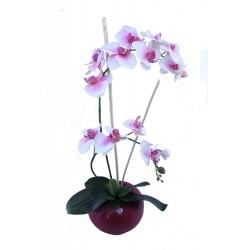 Maceta Orquidea Nature x 2